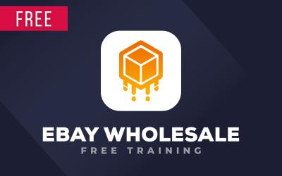 eBay Wholesale Dropshipping Free Training