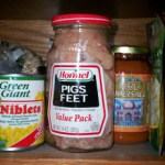 Pigs Feet in My Pantry