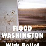 Flood Washington with Relief
