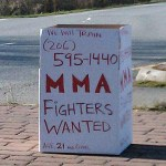 Calling All Mixed Martial Arts Fighters
