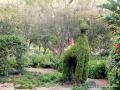 Creatures of Roma Street Gardens