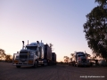 Road trains, Dingo