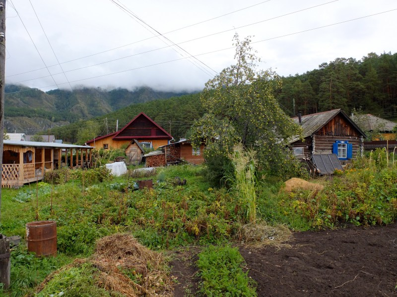 The large veggie patch and fruit tree are standards in a Russian yard.