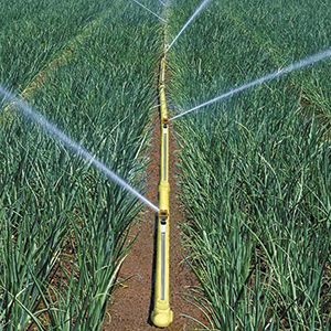 17. Above-ground irrigation