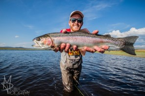 rainbow trout images