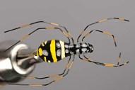 Most amazing fishing flies
