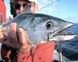 Boat Fishing Canary Islands