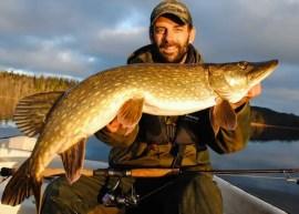 Perch-Fishing-in-Sweden