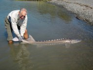 Malcolm with a Canadian Sturgeon