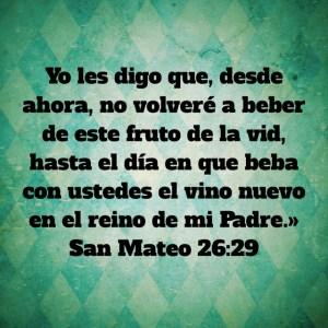 Mateo 26.29