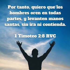 1 Timoteo 2.8