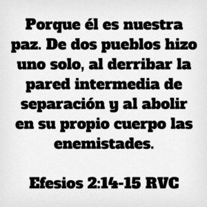 Efesios 2.14-15