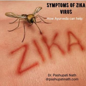 zika virus pic for article