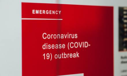 The case for Endgame C: stop almost everything, restart when coronavirus is gone