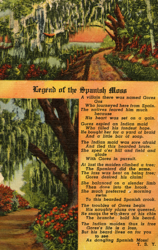 The Legend of Spanish Moss
