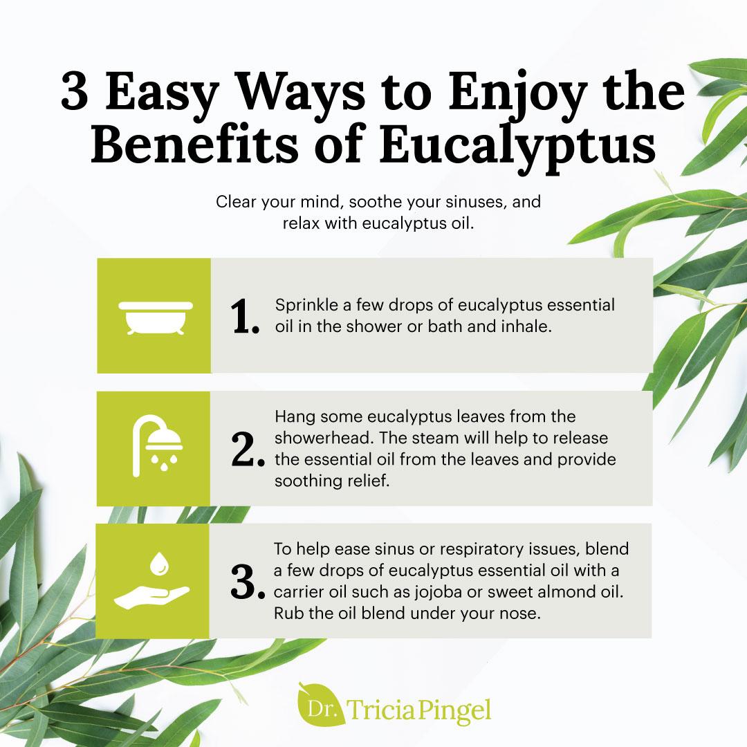 3 ways to enjoy eucalyptus benefits - Dr. Pingel