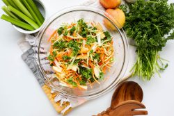 Apple cider vinegar coleslaw - Dr. Pingel
