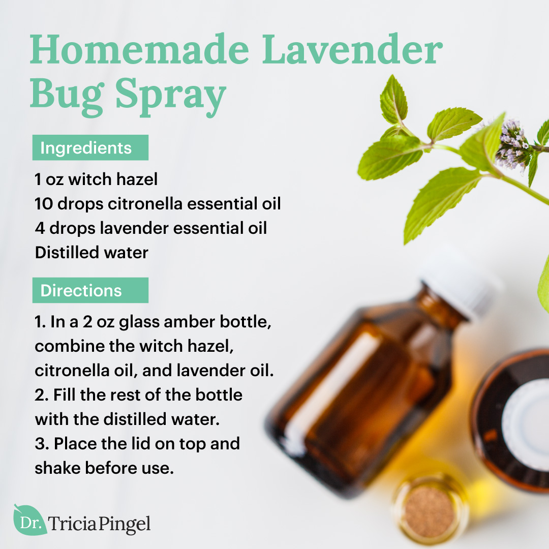 Homemade bug spray - Dr. Pingel
