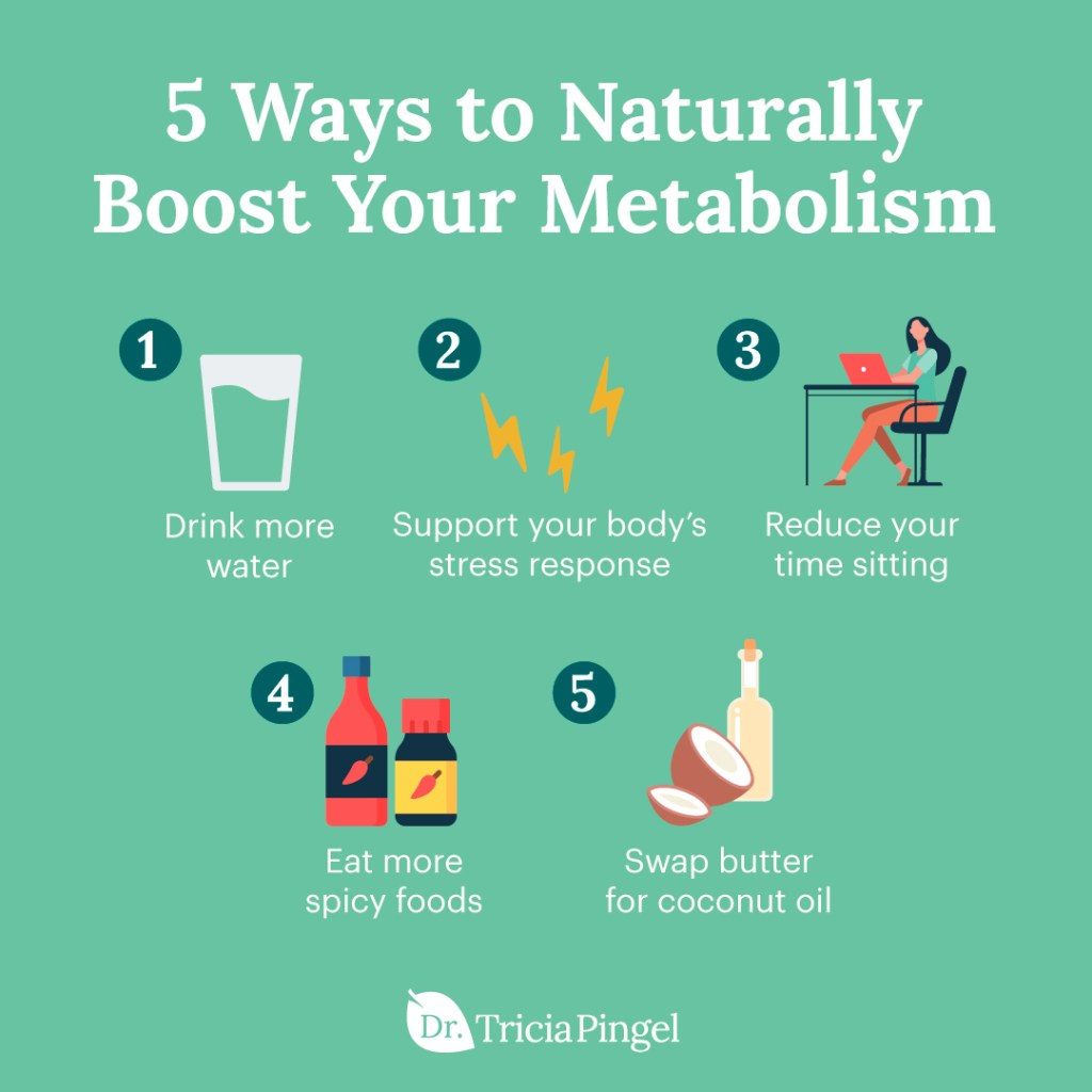 How to increase metabolism - Dr. Pingel