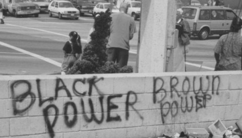 Black Power, Brown Power