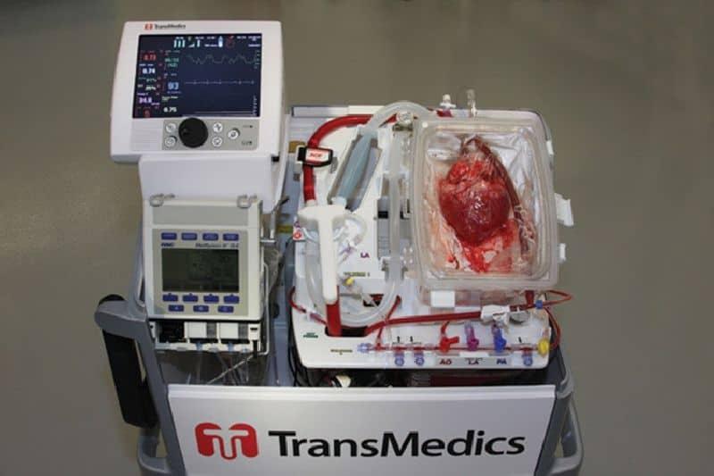 Organ transplant device