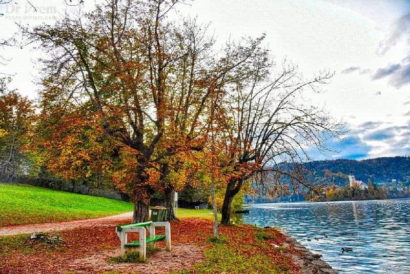 Lake Bled Landscape
