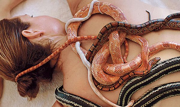 Snake-Therapy