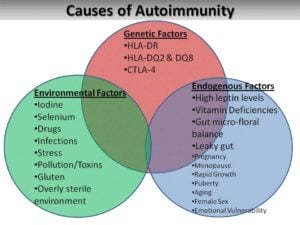 causes_of_autoimmunity