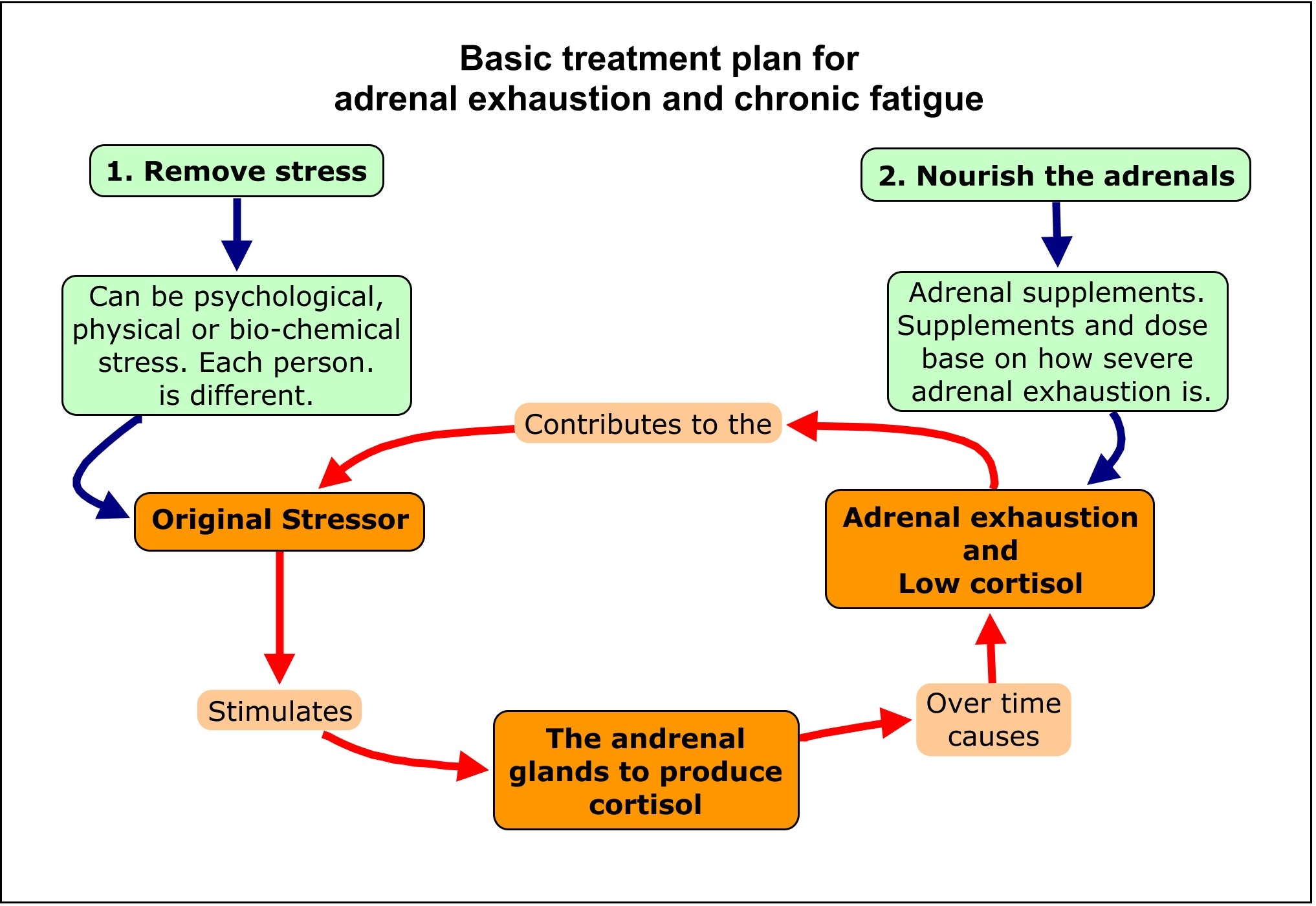 Adrenal Fatigue Exhaustion Stress And Cortisol
