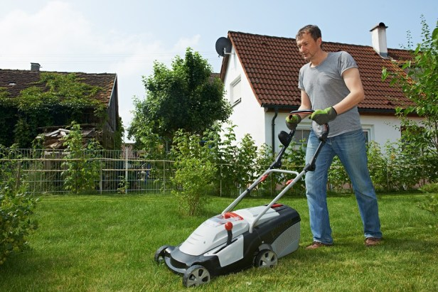 mowing lawn- small