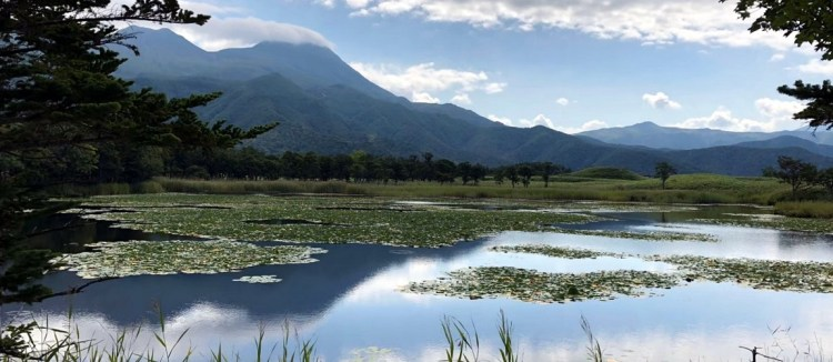 日本最後秘境–道東知床自駕精華巡禮