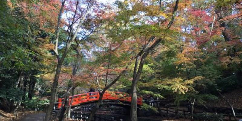 值得大推的賞楓景點--京都北野天滿宮&豆腐名店とようけ茶屋