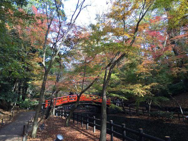 值得大推的賞楓景點–京都北野天滿宮&豆腐名店とようけ茶屋