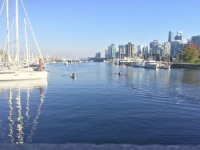 Enjoying the waters of Coal Harbour.