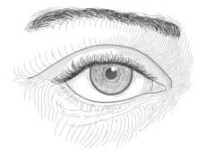 El ojo de raza negra, dibujo