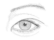 El ojo oriental, dibujo
