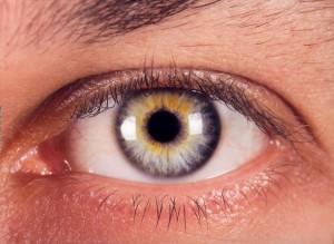 El ojo de raza caucásica o blanca