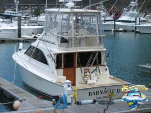 36 Ocean Yacht Los Suenos300x224