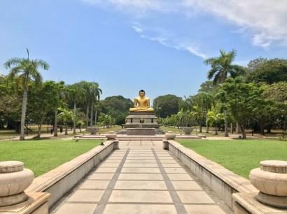 A Budda statue in a park