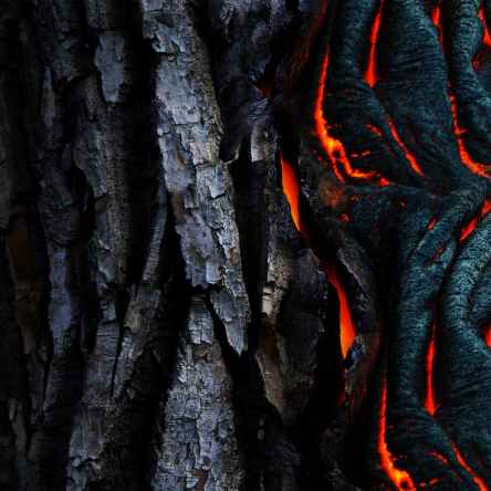photo of dried lava