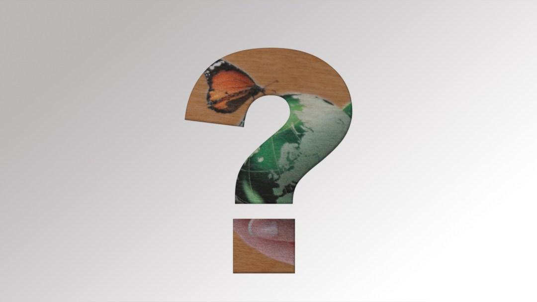 Neue Holzdrucke von Druck+Medien Heiligenhaus