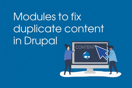 Modules to fix duplicate content in Drupal