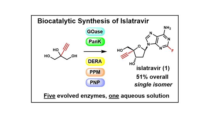Biocatalysis Featured
