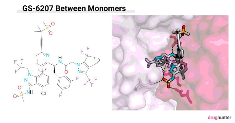 Gilead HIV capsid inhibitor small molecule of the year GS-6207 drug hunter