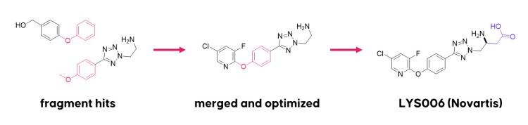chemical structures of the fragment hits and the clinical compound LYS006