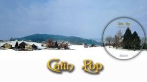 Calin-Pop-29-ianuarie-300x168