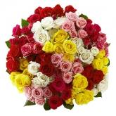buchet-grandios-din-trandafiri-multicolori-ry7fy8uqxx