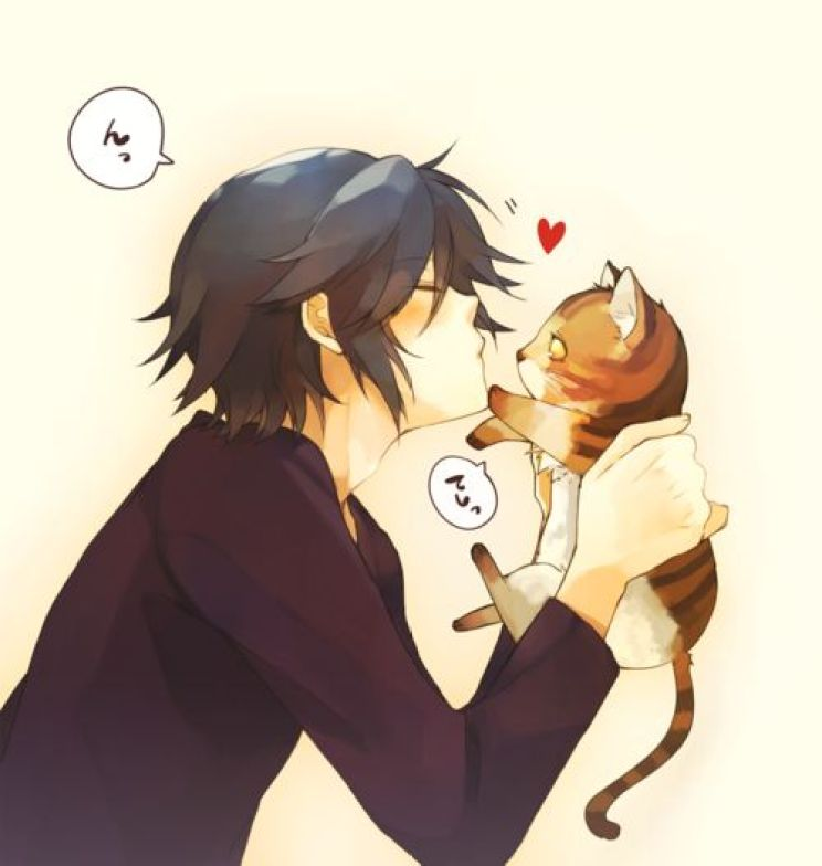cute anime boy and cat