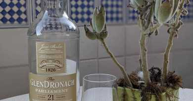 Whisky bottle next to a plant