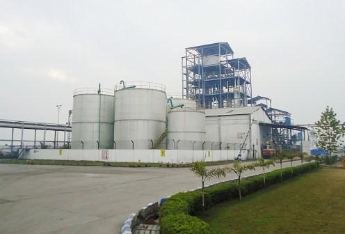 NV-Distilleries-ltd-Ambala-Haryana3